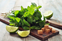 Ingredients  for coctail mojito Stock Photo