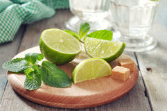 Ingredients  for coctail mojito Royalty Free Stock Image