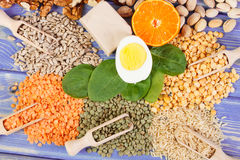 Ingredients containing vitamin B1, dietary fiber and natural minerals. Ingredients or products containing vitamin B1, dietary fiber and natural minerals, healthy royalty free stock photo