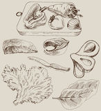 Ingredients for cooking. Set of vector sketches Royalty Free Stock Image