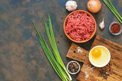 Ingredients for cooking cutlets, meatballs-minced beef meat, raw egg, green onions, garlic, spices on a dark background. Top view,. Space for text Royalty Free Stock Images