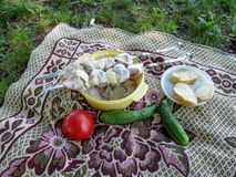 Ingredients for cooking outdoors lie on the blanket on the grass of the meadow Stock Photo