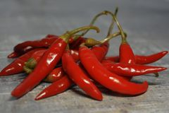Ingredients for cooking - spicy hot red before - chili stock image