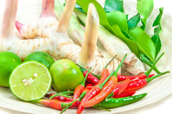 Ingredients For Cooking 'Tom Yum' Dish Chili Hot Spicy Soup Thai Royalty Free Stock Image