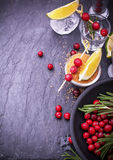 Ingredients for cranberry cocktail with lime and Stock Images