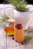 Ingredients for cranberry drink with honey Royalty Free Stock Images