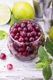 Ingredients for cranberry mojito with fresh cranberries, mint flavored, juicy lime and ice cubes  seasonal Family Royalty Free Stock Photo
