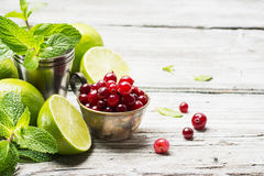 Ingredients for cranberry mojito with fresh cranberries, mint flavored, juicy lime and ice cubes  seasonal Family Stock Photo