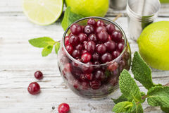 Ingredients for cranberry mojito with fresh cranberries, mint flavored, juicy lime and ice cubes  seasonal Family Royalty Free Stock Photography