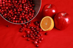 Ingredients for cranberry relish or sauce Royalty Free Stock Images