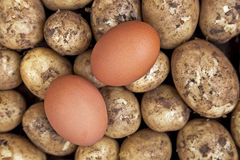 Ingredients for eggs and chips (UK) / fries (US) Royalty Free Stock Photo