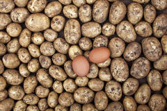 Ingredients for eggs and chips (UK) / fries (US) Stock Image