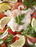 Ingredients for fish recipe. Royalty Free Stock Photos