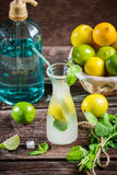 Ingredients for a fresh cold drink lemon Royalty Free Stock Photography