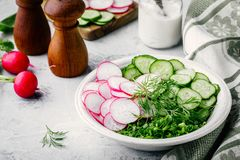 Ingredients for  summer salad. Slices of radish and cucumber, green onions and dill. Ingredients for a fresh summer salad. Slices of radish and cucumber, green Stock Image