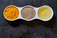 Ingredients for golden paste Royalty Free Stock Photos