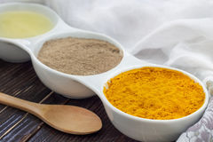 Ingredients for golden paste Stock Images