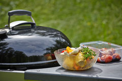 Ingredients and grill Stock Photography