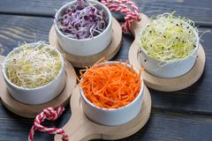 Ingredients for healthy salad. Raw fresh young organic sprouts o. Raw fresh young organic sprouts of leek, alfalfa, red reddish and carrot in bowls Royalty Free Stock Photography