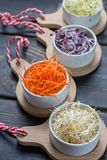 Ingredients for healthy salad. Raw fresh young organic sprouts o. Raw fresh young organic sprouts of leek, alfalfa, red reddish and carrot in bowls Royalty Free Stock Images