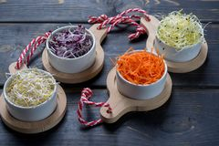Ingredients for healthy salad. Raw fresh young organic sprouts o. Raw fresh young organic sprouts of leek, alfalfa, red reddish in bowls, carrot and green Royalty Free Stock Images