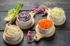 Ingredients for healthy salad. Raw fresh young organic sprouts o. Raw fresh young organic sprouts of leek, alfalfa, red reddish in bowls, carrot and green Royalty Free Stock Photography