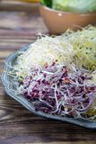 Ingredients for healthy salad. Raw fresh young organic sprouts o. Raw fresh young organic sprouts of leek, alfalfa, red reddish mixed on tin board Royalty Free Stock Photos