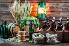 Ingredients for homemade beer stored in the cellar Royalty Free Stock Photography