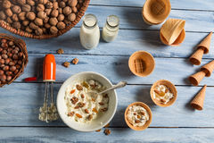 Ingredients for homemade nuts ice cream Royalty Free Stock Photography