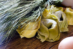 Ingredients for homemade preparation ravioli Royalty Free Stock Photography