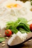 Ingredients for Homemade Ravioli Royalty Free Stock Photos