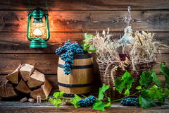 Ingredients for homemade red wine Royalty Free Stock Photography