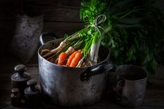Ingredients for homemade vegan soup with carrots, parsley and leek Royalty Free Stock Photos