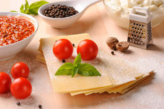 Ingredients for Italian lasagne Stock Photography