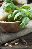 Ingredients for italian pasta with pesto with basil and cheese Royalty Free Stock Image