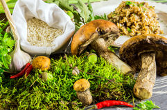 Ingredients of Italian risotto with mushrooms Stock Photos