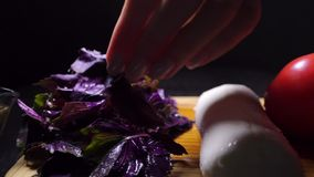 Ingredients for italian salad and female hand with a leaf of basil stock video