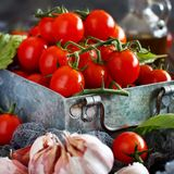 Ingredients for italian tomato sauce. Cherry tomatoes, garlic, basil and olive oil royalty free stock image