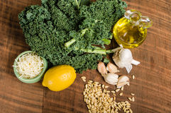 Ingredients for kale pesto Royalty Free Stock Photography