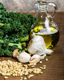 Ingredients for kale pesto Royalty Free Stock Image