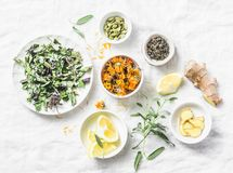 Ingredients for liver detox antioxidant tea on a light background, top view. Dry herbs, roots, flowers for homeopathy recipe for d. Etox drink. Flat lay royalty free stock photography