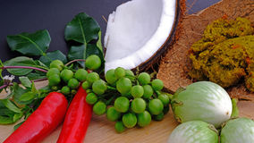 Ingredients for making famous Thai green curry Stock Image
