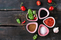 Ingredients for making ketchup Stock Photography
