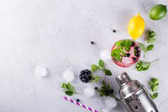 Ingredients for making lemonade , Mojito Cocktails or other drinks with blueberry on a gray background stock photography