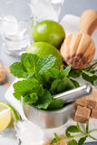 Ingredients for making mojitos Stock Photos