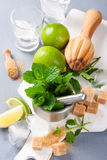 Ingredients for making mojitos Stock Images
