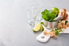 Ingredients for making mojitos Royalty Free Stock Image