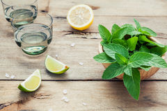 Ingredients for making mojitos mint leaves, lime,lemon and vodka Stock Images