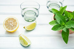 Ingredients for making mojitos mint leaves, lime,lemon and vodka Stock Photography