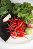ingredients for making Thai food Royalty Free Stock Photos